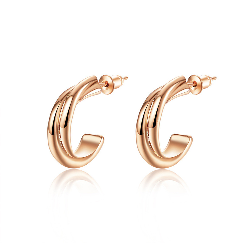 Creative High Quality Earrings Rose Gold plated Fashion Earring for Women LKN18KRGPE003