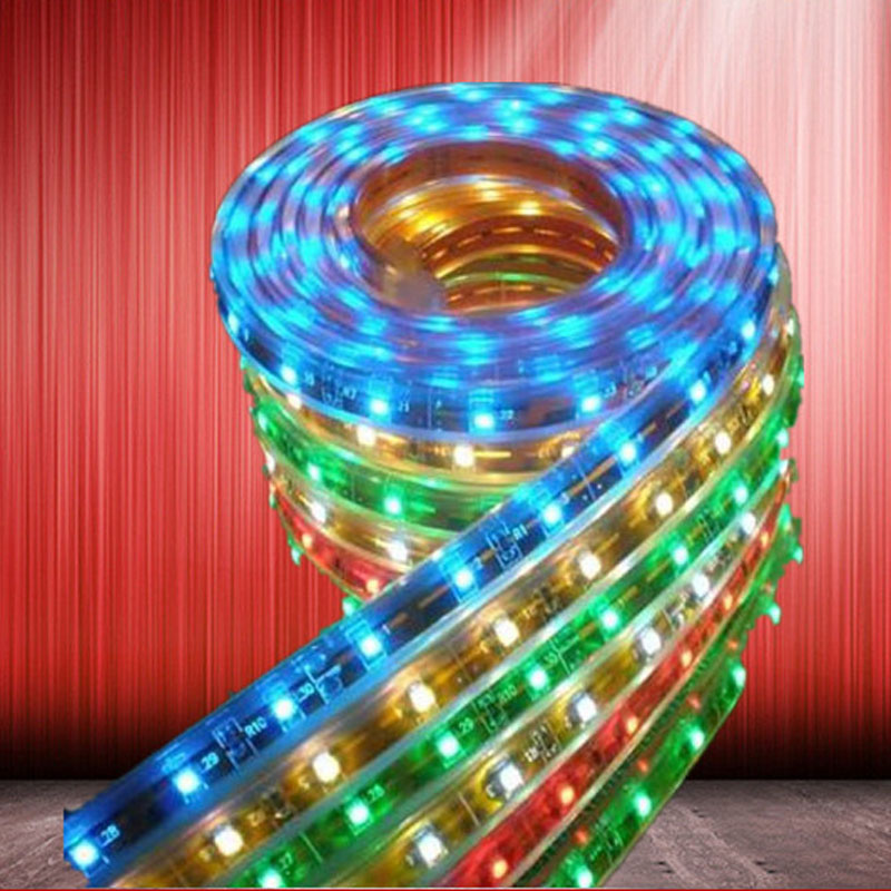5050 waterproof led strip light string high voltage high brightness led Ribbon lamp tape rope lighting with DC connector