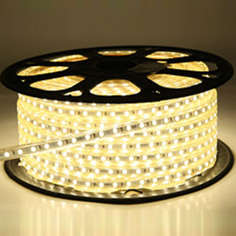 LED Strip Light 3014 SMD LED Flexible Light IP67 Waterpoof 110V/220V