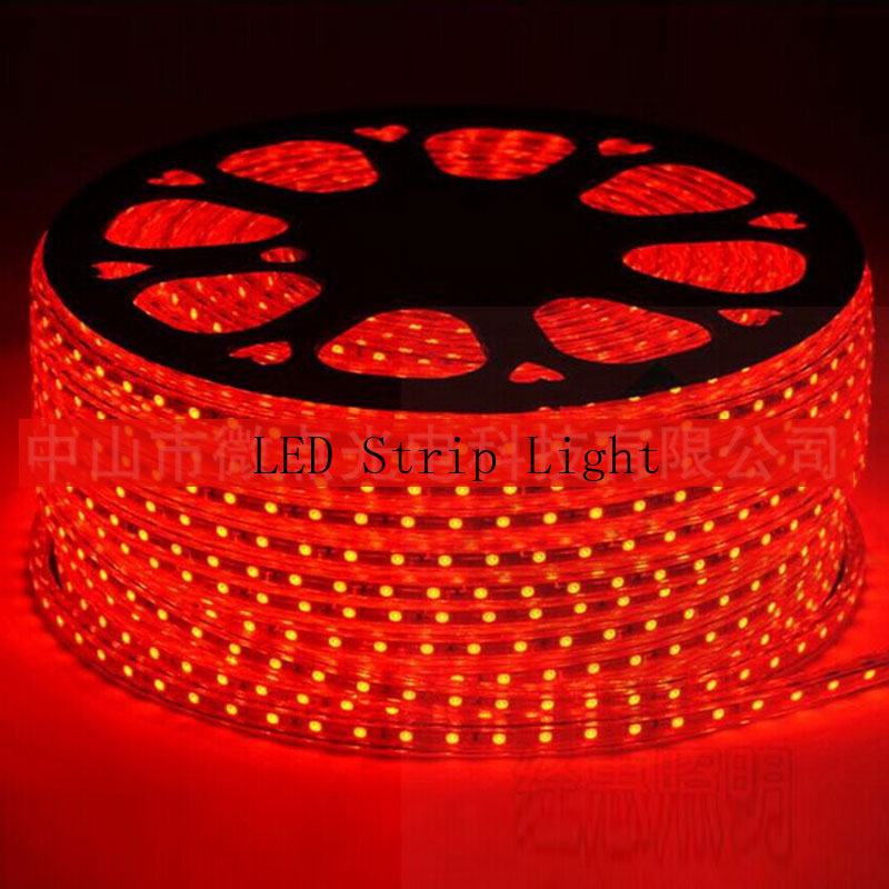 LED Strip Light 5050 SMD LED Flexible Light IP67 Waterpoof 220V